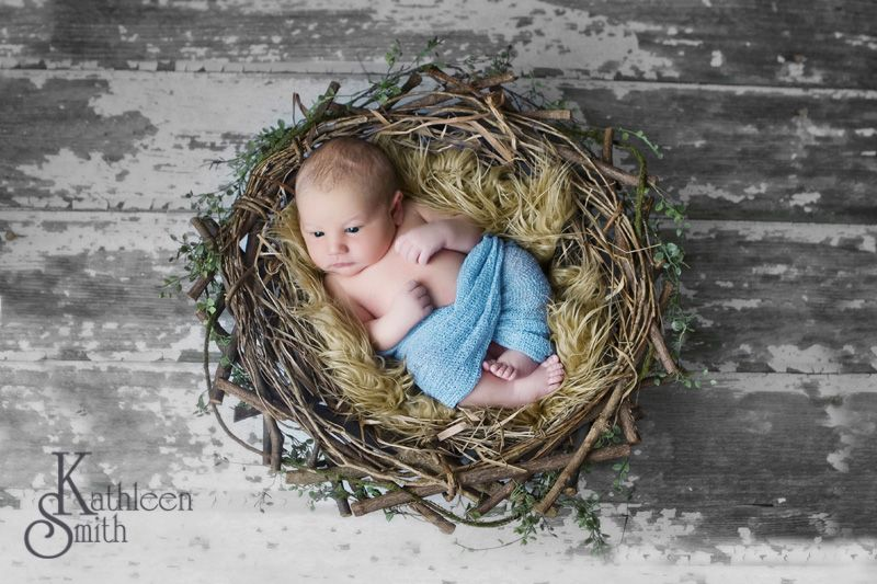 Baby in bird nest